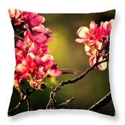 Spring Dance Throw Pillow