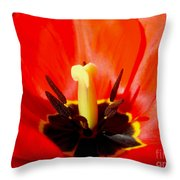Red Tulip In Spring Throw Pillow
