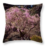 Spring Day In Park Throw Pillow
