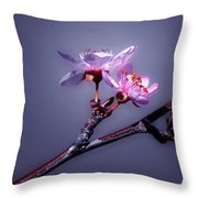 Spring Delight Throw Pillow by Camille Lopez