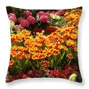 Spring Delight Throw Pillow
