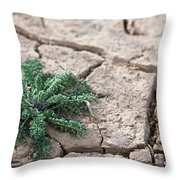 Breaking Of The Drought Throw Pillow