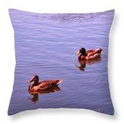 Spring Ducks Throw Pillow
