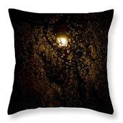 Spring Evening Golden Glow Throw Pillow