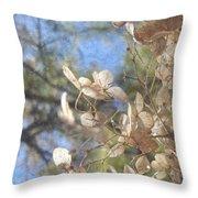 Spring Fancies 4 Throw Pillow