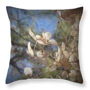 Spring Fancies 5 Throw Pillow