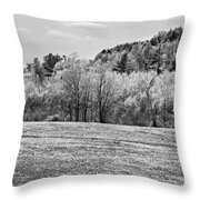 Spring Farm Landscape With Dandelions In Maine Throw Pillow