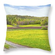 Spring Farm Landscape With Dirt Road And Dandelions Maine Throw Pillow