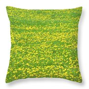 Spring Farm Panorama With Dandelion Bloom In Maine Canvas Poster Print Throw Pillow