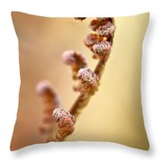 Spring Fern Throw Pillow