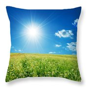 Spring Field With Flowers And Blue Sky Throw Pillow