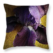 Spring Finery  Throw Pillow