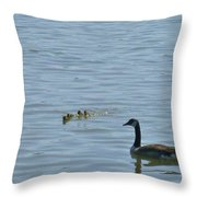 Spring Flotilla With Guardians Throw Pillow