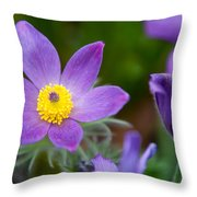 Spring Flowers 1. Flowers Of Holland Throw Pillow