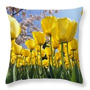 Spring Flowers 10 Throw Pillow
