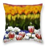 Spring Flowers 11 Throw Pillow