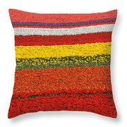 Spring Flowers 13 Throw Pillow