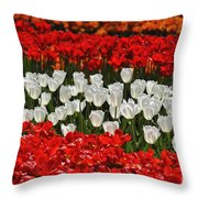 Spring Flowers 16 Throw Pillow