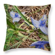 Spring Flowers 2 Throw Pillow