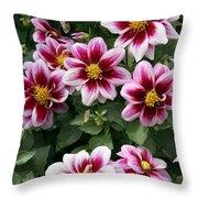 Spring Flowers 4 Throw Pillow