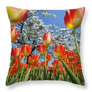 Spring Flowers 7 Throw Pillow