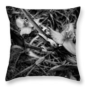 Spring Flowers Bw Throw Pillow