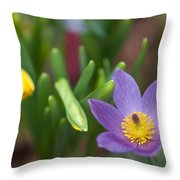 Spring Flowers. Flowers Of Holland Throw Pillow