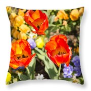 Spring Flowers No. 3 Throw Pillow