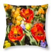Spring Flowers No. 4 Throw Pillow