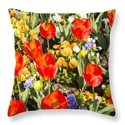 Spring Flowers No. 5 Throw Pillow