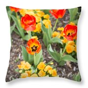 Spring Flowers No. 6 Throw Pillow