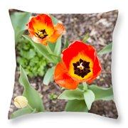 Spring Flowers No. 7 Throw Pillow