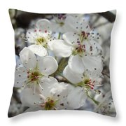 Spring Gala Throw Pillow
