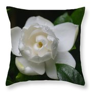Spring Gardenia 2013 Throw Pillow