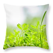 Spring Green Sprouts Throw Pillow by Elena Elisseeva