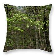 Spring Greenery Throw Pillow