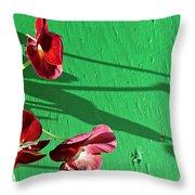 Spring Haiku 2 Throw Pillow