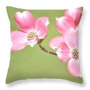 Spring Harbinger Throw Pillow