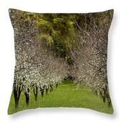Spring Has Sprung Throw Pillow