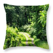 Spring Hikes Throw Pillow