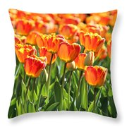 Spring In Beantown Throw Pillow
