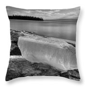 Spring In January Block Of Ice Bw Throw Pillow