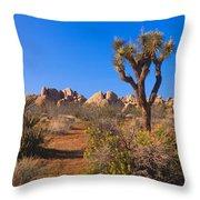 Spring In Joshua Tree National Park Throw Pillow