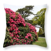 Spring In Muckross Garden - Ireland Throw Pillow
