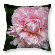 Spring In Pink Throw Pillow