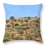 Spring In The California Hills  6950 Throw Pillow
