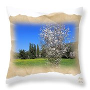 Spring In The Paper Throw Pillow