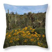 Spring In The Superstition Wilderness Throw Pillow