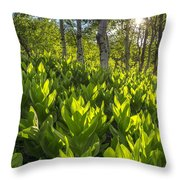 Spring In The Wasatch Throw Pillow