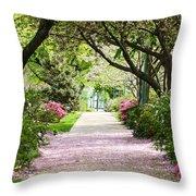 Spring In Washington Dc Throw Pillow